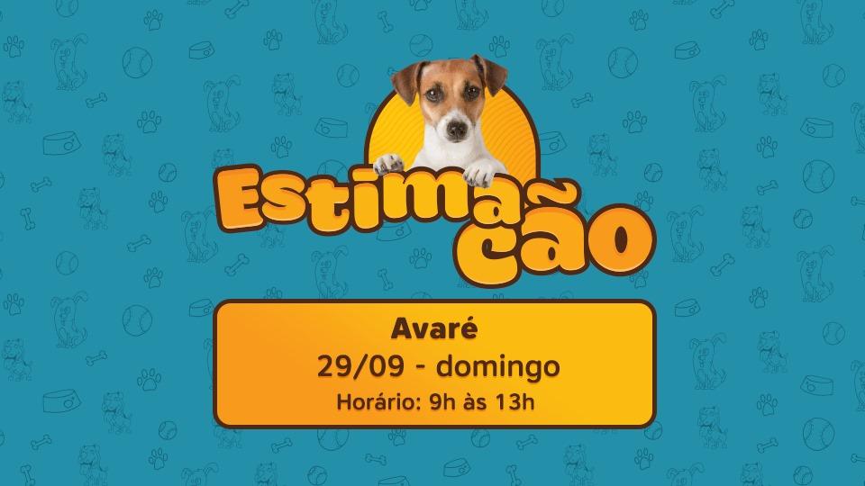 ESTIMACÃO AVARÉ