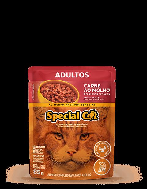 SACHÊ SPECIAL CAT ADULTOS SABOR CARNE