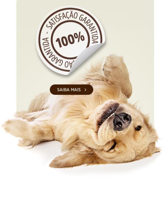 100% Satisfação SpecialDog