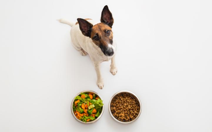 Alimentação caseira: riscos e benefícios.