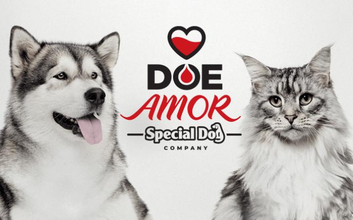 Conheça a campanha Doe Amor.